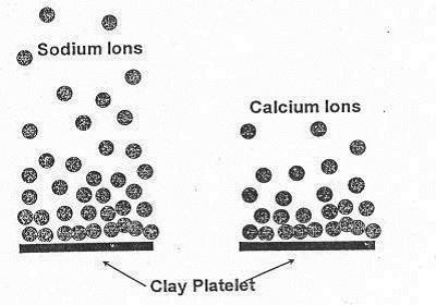 sodium and calcium attached to clay particles